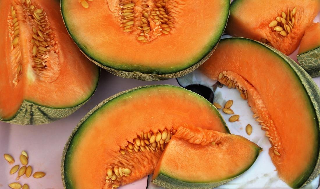 Stücke einer orangefarbenen Galiamelone
